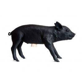 Harry Allen Pig Bank - Matte Black at DesignPublic.com
