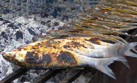 Muggini arrosto -  Wenn der kostbare Rogen der Meeräsche vorsichtig entnommen und zu #Bottarga verarbeitet wird - kommt der Fisch am Besten auf den Grill.  www.sardische-feinkost.de