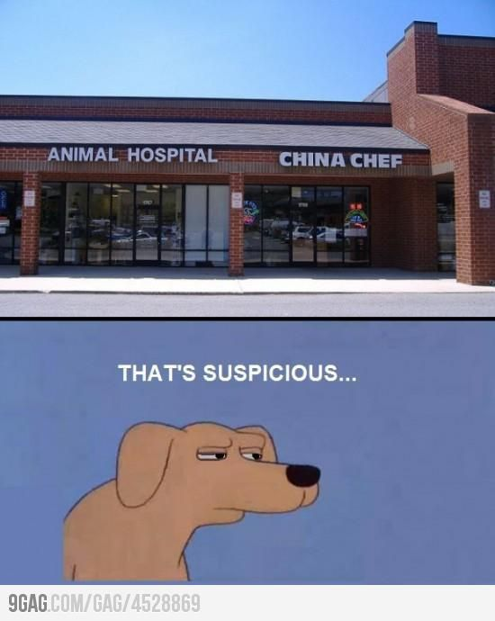 When Animal Hospital is next to China Chef...   Just For Fun