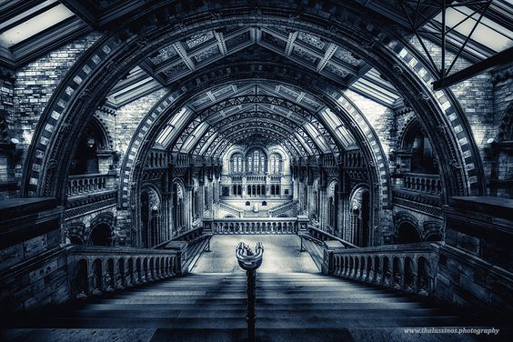 Natural History Museum, London by George Thalassinos - Photo 138783867 - 500px