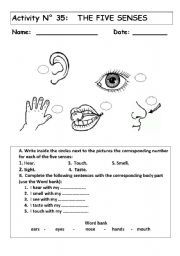 sense of organs worksheets - Google Search | Places to ...