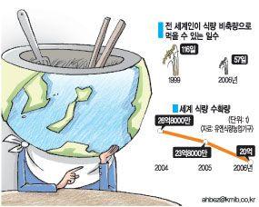 굶주린 지구…올해 세계식량 5800만톤 부족,비축량도 57일분 뿐 | 다음뉴스