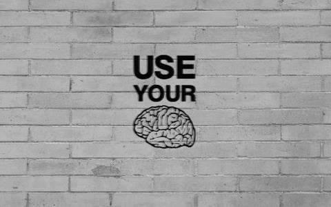 Brain   Pinterest   Google   salsabila