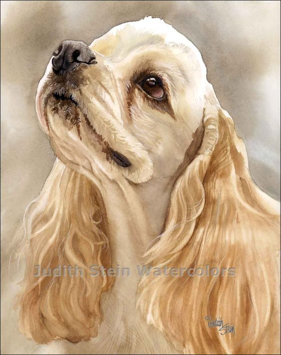 COCKER SPANIEL Dog 11x15 Giclee Watercolor Print
