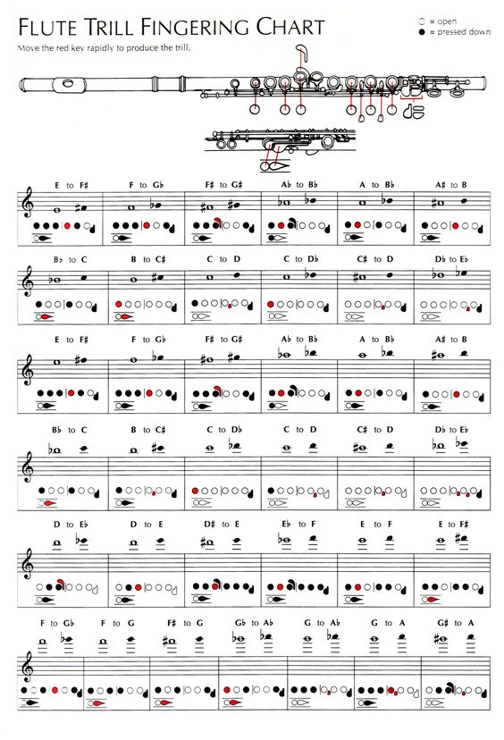 189 best Other southern gospel images on Pinterest Southern - flute fingering chart