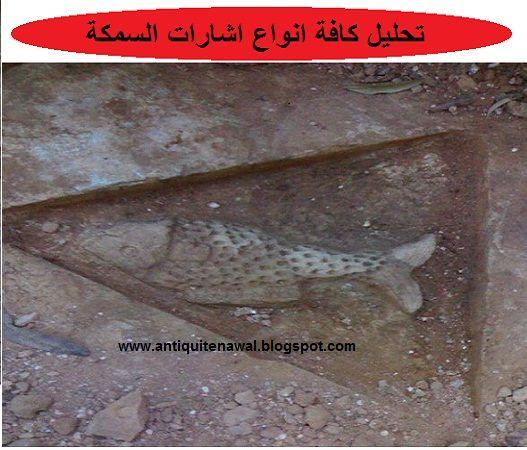 تحليل كافة انواع اشارات السمكة Fish
