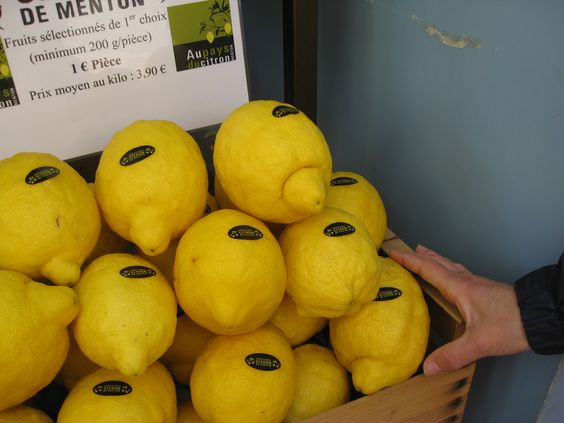 les citrons de Menton, Provence