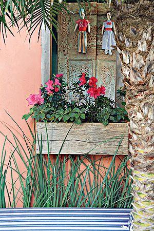 As miniazaleias foram plantadas direto nas jardineiras de madeira de demolição. Abaixo delas, a moréia espera sua época de floração