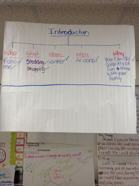Need ideas for an introductory paragraph!?