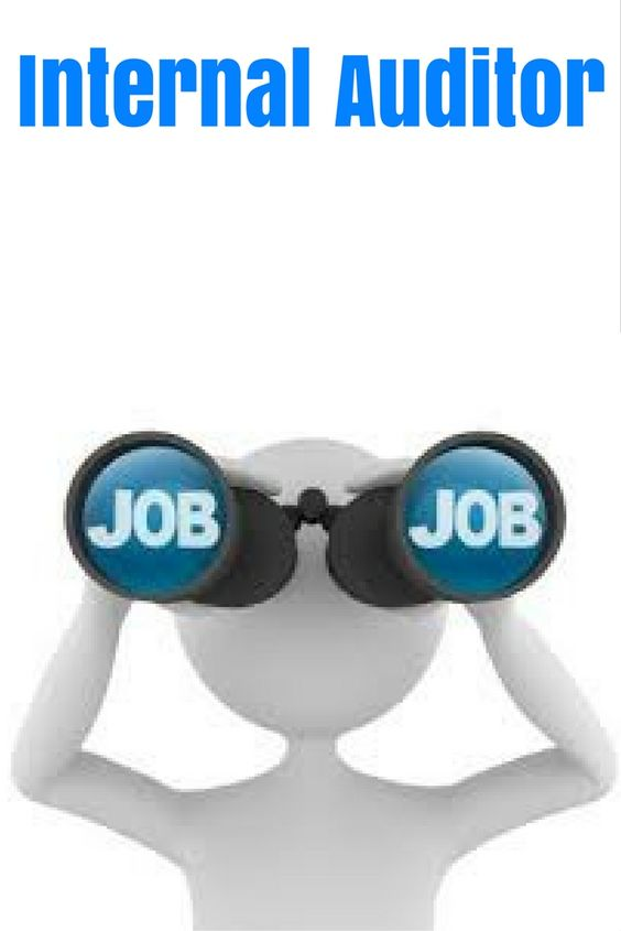 Internal Auditor Intramex Group Job Description  Responsibility N