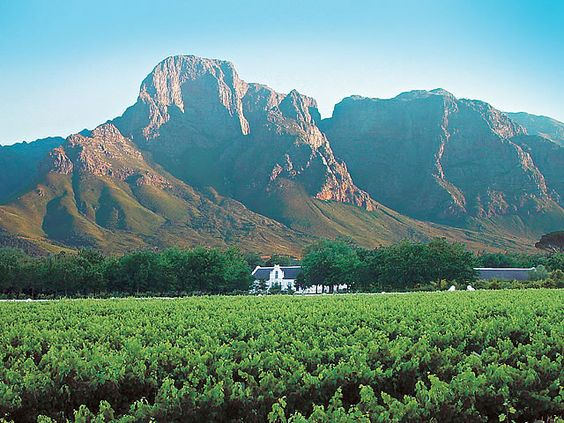 I Live In The Most Beautiful Place In The World Stellenbosch Winelands Western Cape South