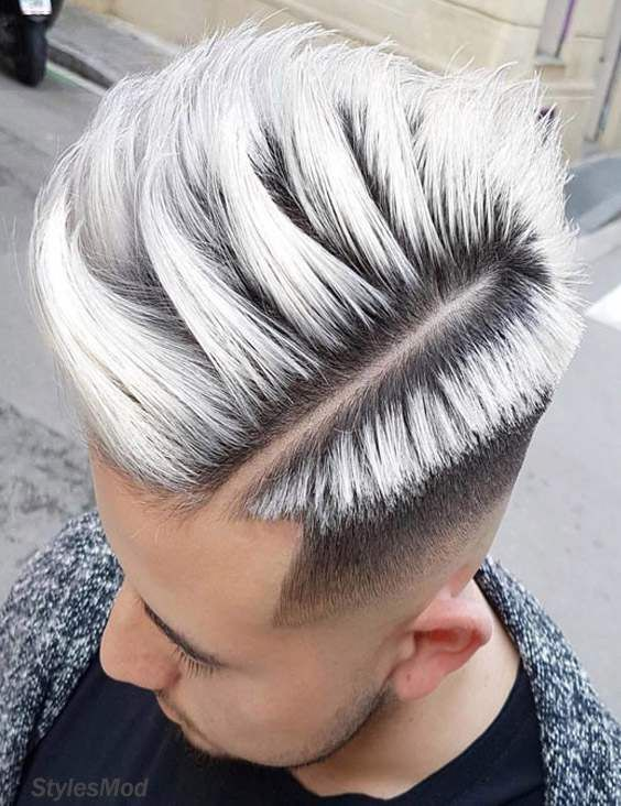 New Fresh Men S Hairstyles With Silver Highlight For 2018 Stylesmod Men Hair Color Mens Hair Colour Hair Styles