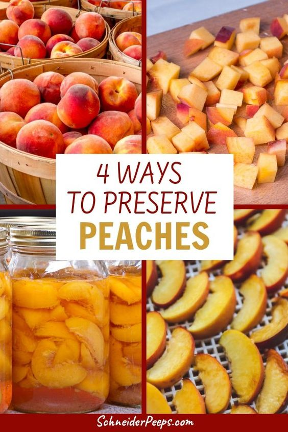 4 Ways to Preserve Peaches - canning, fermenting, dehydrating, freezing