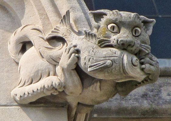 The National Cathedral in Washington, D.C. has 112 gargoyles and many more grotesques. Both gargoyles and grotesques are designed to keep water running off the side of the building. This cat is actually a grotesque, not a gargoyle - grotesques displace water by having it run over them, while gargoyles have a tube for water out their mouth.