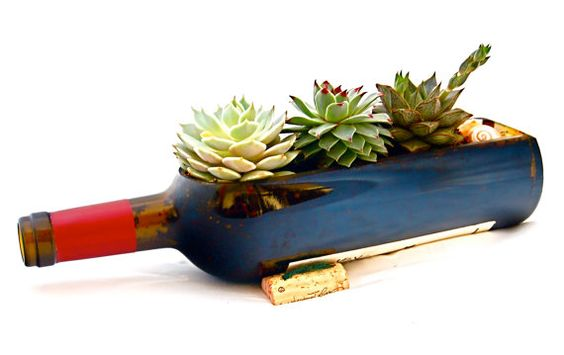 Birthday Gift // Wine Bottle Garden Succulent Planter Kit