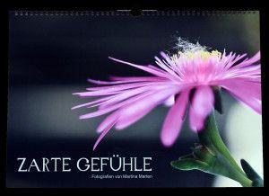 Unter diesem Titel können Sie meinen wunderschönen Pflanzenkalender direkt über mich beziehen.  Ein Begleiter für jede Jahreszeit. Ideal a...