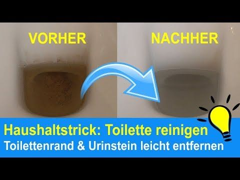 Toilette Reinigen Toilettenrander Urinstein Beseitigen