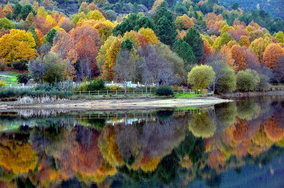 Fotografía De mis paseos por el lago... por Mercedes Salvador en 500px
