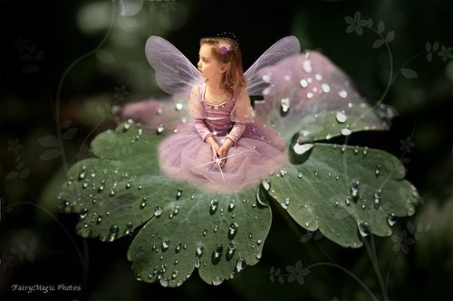 The Dew Drop Fairy After the rain when the dew drops settle She lounges upon the twinkling petals The glittering gems and diamonds appear In thousands of reflecting magical mirrors. Written by Sarah Sabatini