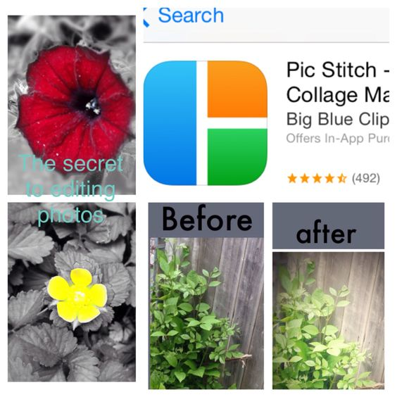 This is the secret to getting amazing photos I edit almost all my photos with this app. it's called pic stitch I also edited this pin with this app
