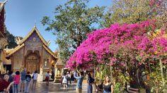 Conheça e se apaixone por Chiang Mai a capital cultural da Tailândia
