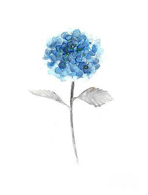 Blue Hydrangea Watercolor Painting By Joanna Szmerdt In 2020 Blue Flower Painting Flower Art Painting Blue Flower Tattoos