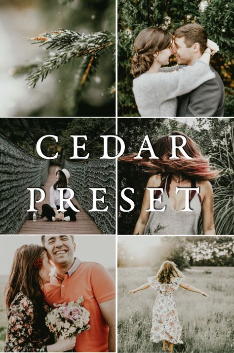 Phil chester presets free download
