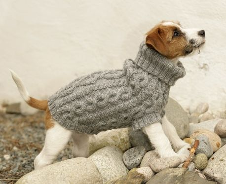 Links to several free patterns for (okay they're for dogs, but its the same difference) coats | loveknitting