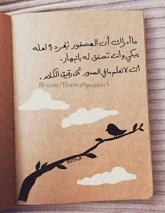 كلمات م عبرة Drawing Quotes Arabic Quotes Postive Quotes