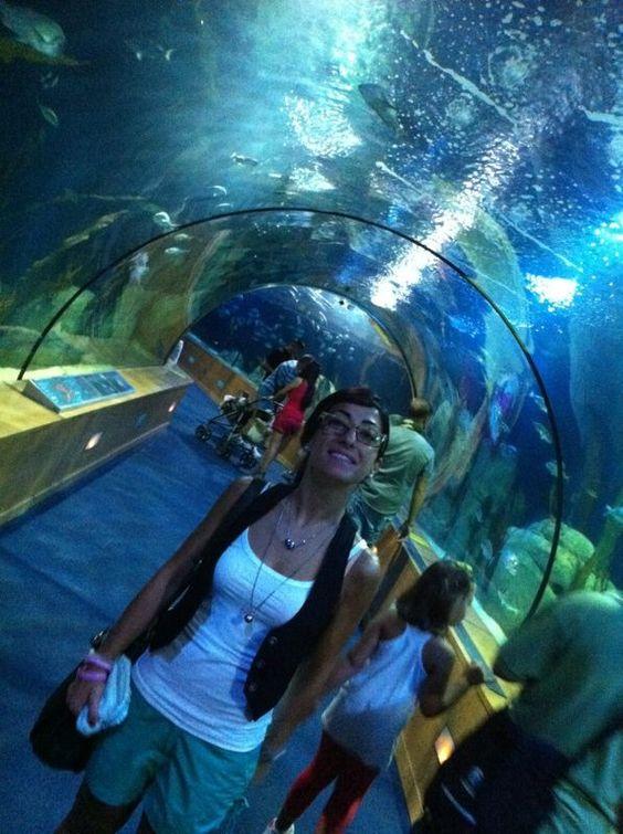 Aquarium - Ciudad de las artes y las cienças - Valencia