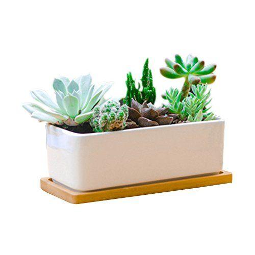 65 Inch White Rectangle Ceramic Succulent Planter Pot Decorative Cactus Plant Pot Flower Containe Cactus Plant Pots Ceramic Succulent Ceramic Succulent Planter