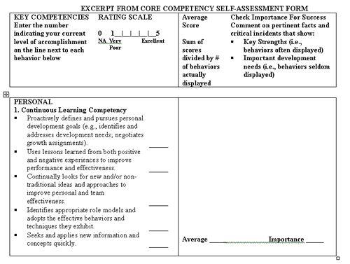 Critical Success Behaviors Self Assessment  Professional Best