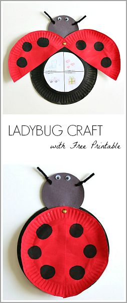 Paper Plate Ladybug Craft Inspired by Eric Carle's The Grouch Ladybug (with FREE printable)~ BuggyandBuddy.com: