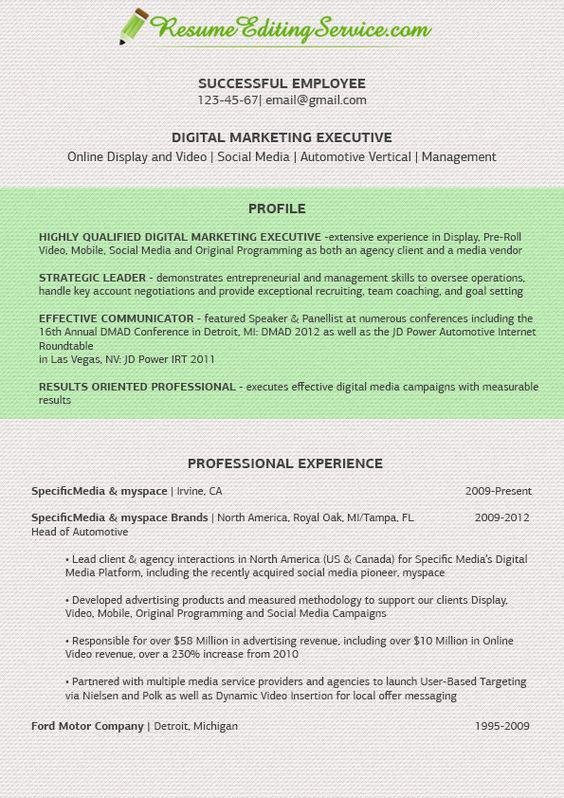 Fine Digital Marketing Executive Resume See More Samples On Our