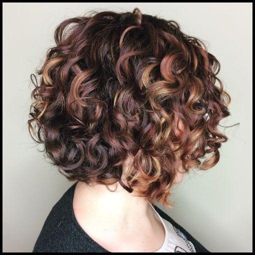 50 Verschiedene Versionen Von Curly Bob Frisur Neue Haarmodelle Kurzhaarfrisuren2019 Lockenfris Cabelo Incrivel Cabelo Encaracolado Curto Ideias De Cabelo