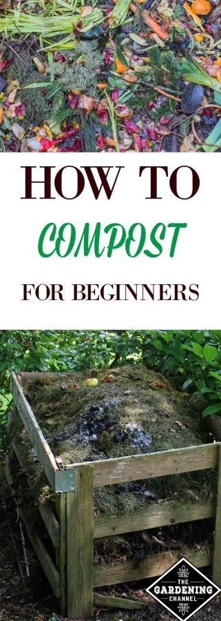 Composting 101: All About Composting for Beginners - Gardening Channel