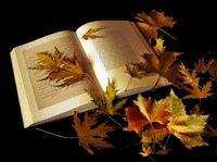 L'automne 9dfd2ce850bd40516553829d9612177a