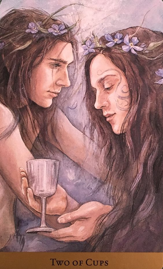 Two Of Cups, from the Tarot Of The Hidden Realm, by Julia Jeffrey and Barbara…