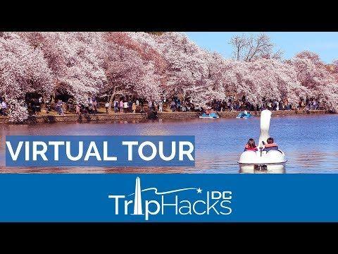 Pin By Etru Etylaz On 4b18 In 2021 Virtual Tour Washington Dc Cherry Blossom