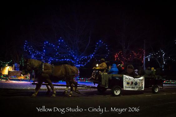 Horse Drawn Wagon Rides through Irvine Park & Zoo's Christmas Village   Photo by Yellow Dog Studio 2016