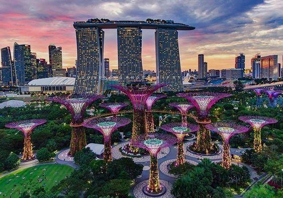 9e0fdcf2f615eb410a8365201f312c65 - Hotels In Gardens By The Bay
