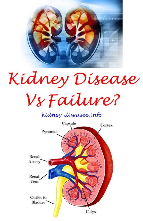 Renal Diet Side Dishes Renal Failure Recipes Kidney Disease Awareness Kidney Failure Causes