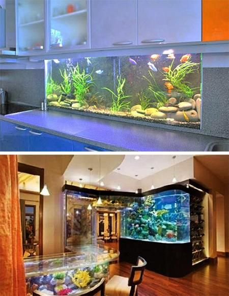 Glass fish tanks fish tanks and tropical fish tanks on for Aquarium interior designs pictures