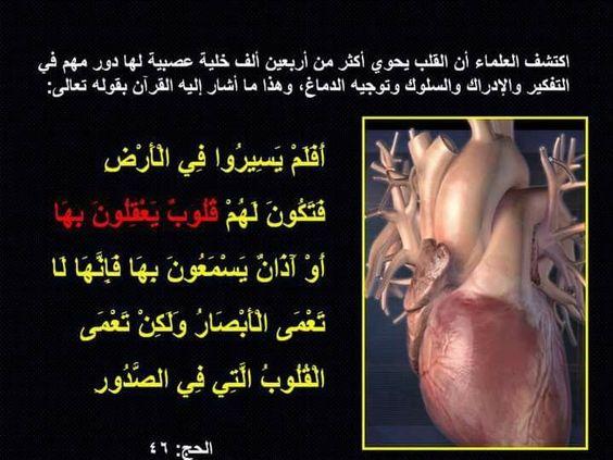 سبحان الله العظيم Praying To God Words God Almighty