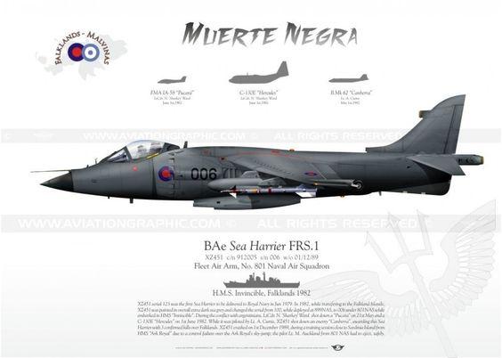 "BAE SEA Harrier FRS.1 - Fleet Air Arm, No. 801 Naval Air Squadron, H.M.S. ""Invincible"", Falklands 1982  'Muerte Negra'"