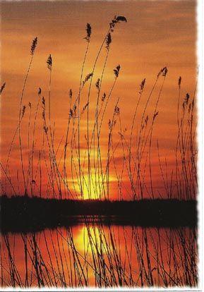 Kesäiset auringonlaskut sekä nousut