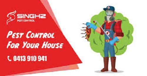 Get Free Pest Control Quote In Brisbane Singhz Termite Pest Control Pest Control Termite Control