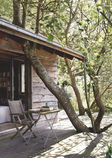 en bois maisons de montagne arbres cabane terrasse bois maison