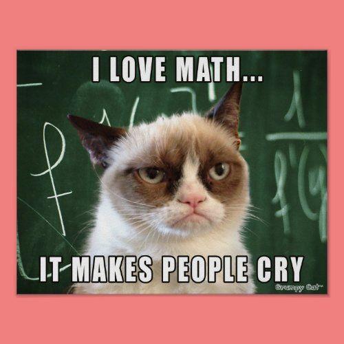 Grumpy Cat Poster I Love Math It Makes People Cry Poster Zazzle Com Funny Grumpy Cat Memes Funny Cat Memes Grumpy Cat
