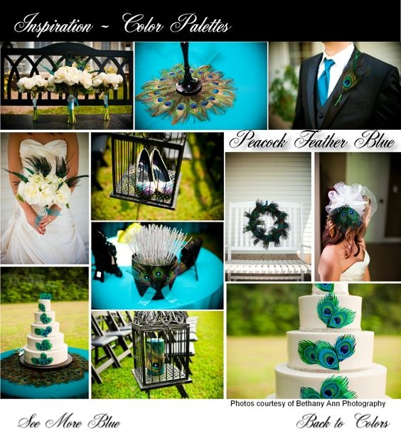 Peacock Feather Wedding Details. Peacock Feather Decor. Teal Linens. Turquoise wedding accents. Peacock Feather Cake. Bird cage veil with peacock feathers. Peacock feather shoes. Peacock feather boutonniere. Black & Teal Wedding Decor. Black Guest Signing Bench. Black Wedding Chairs.